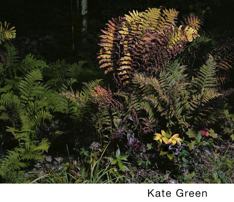 Green, Kate.jpg