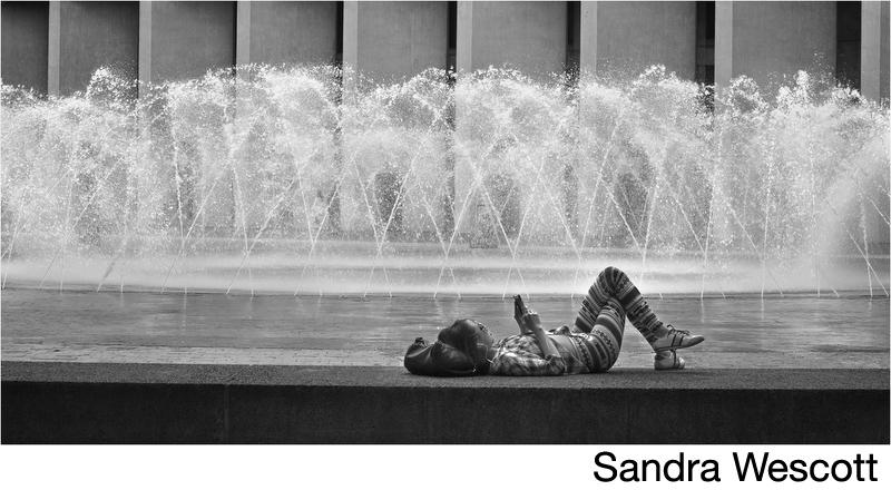 Wescott, Sandra.jpg