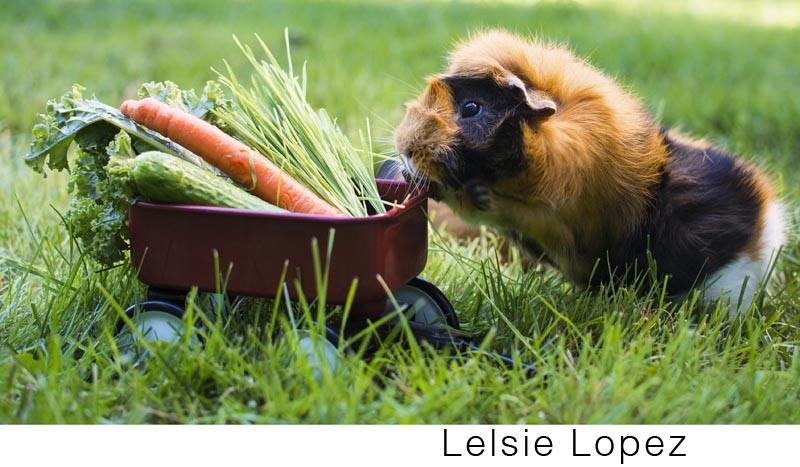 Lopez_Lesie.jpg