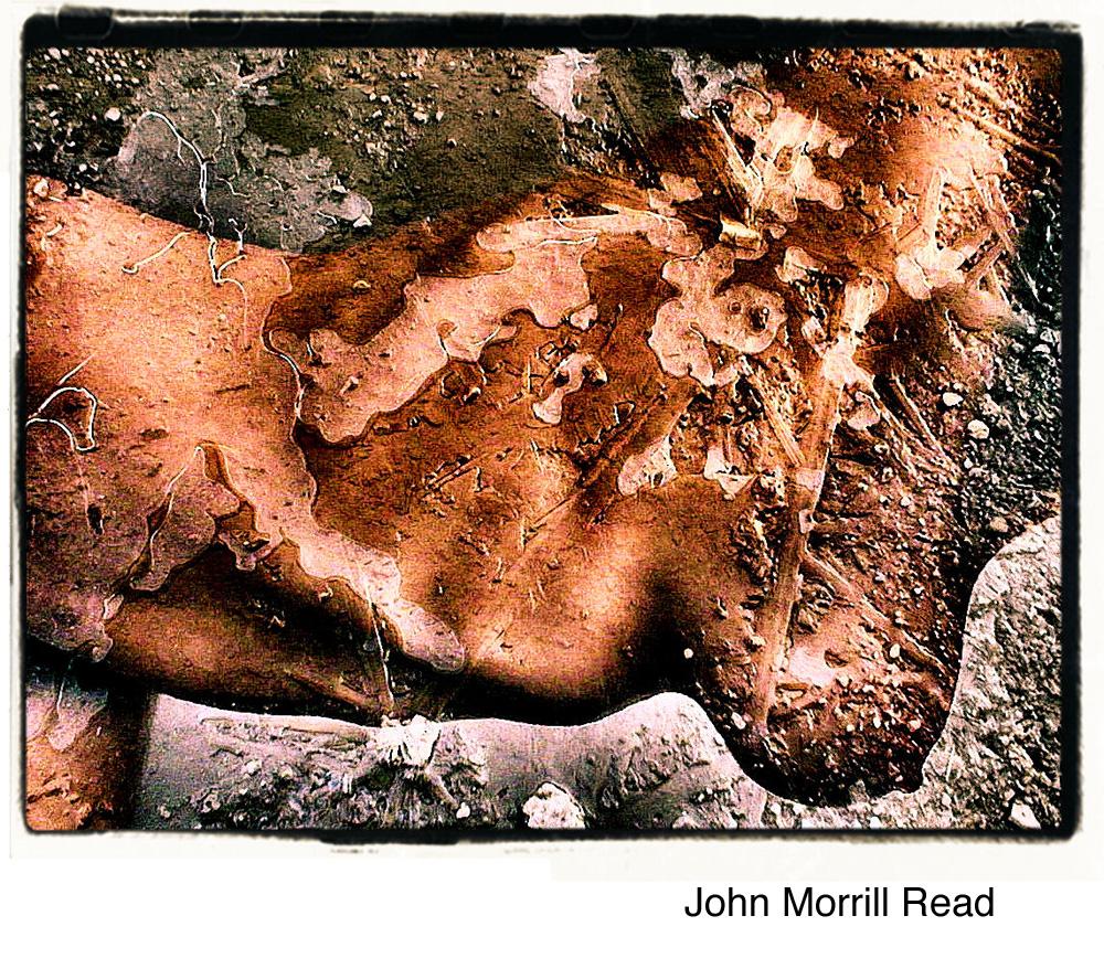 Morrill Read, John.jpg