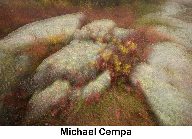 Cempa_Michael.jpg