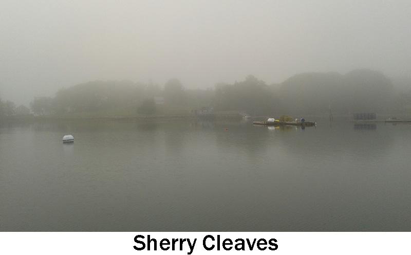 Cleaves_Sherry.jpg