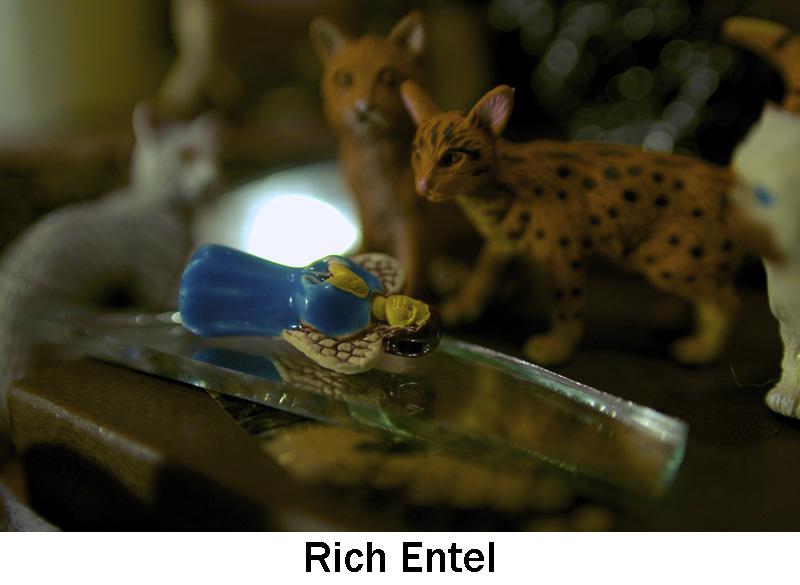 Entel_Rich.jpg