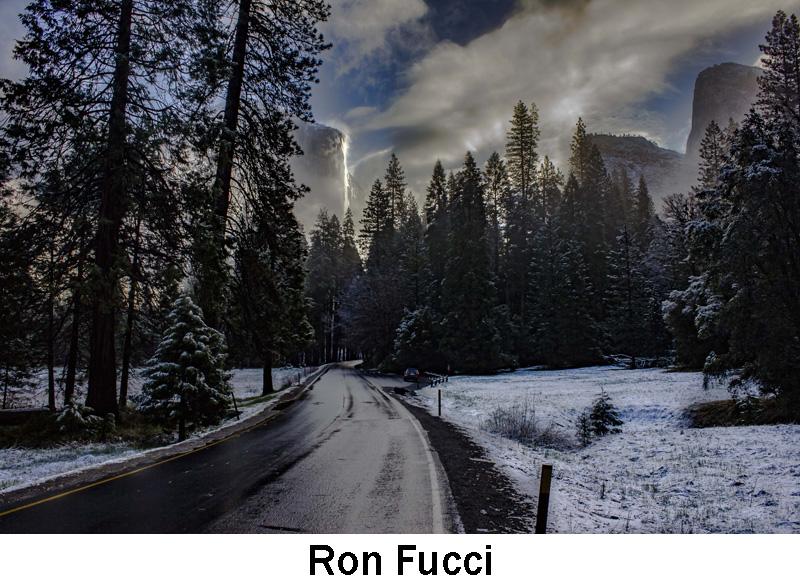 Fucci_Ron.jpg