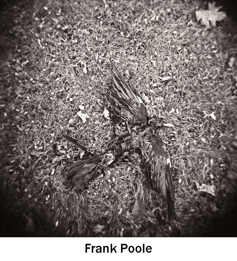 Poole_Frank.jpg