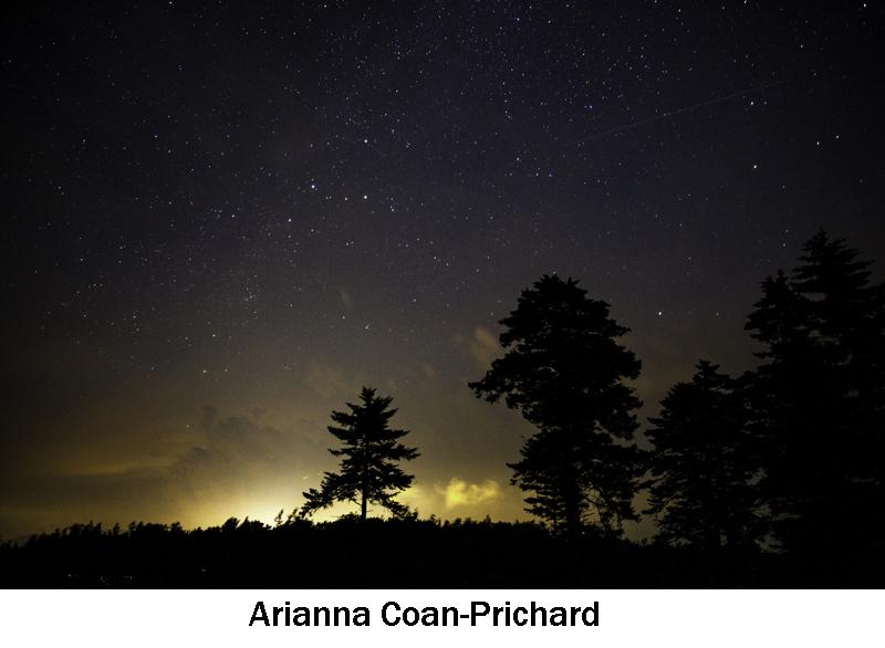 Coan-Prichard_Arianna.jpg