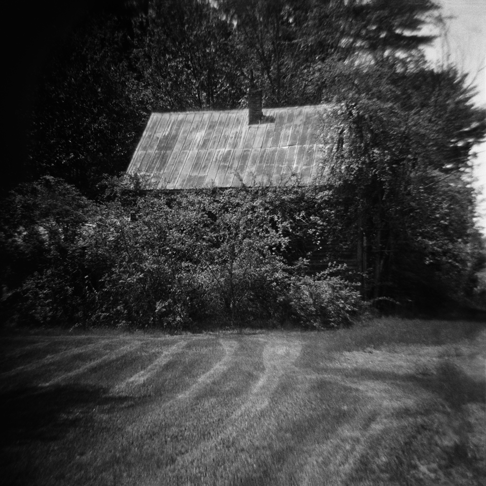 02 Untitled (overgrown house).jpg