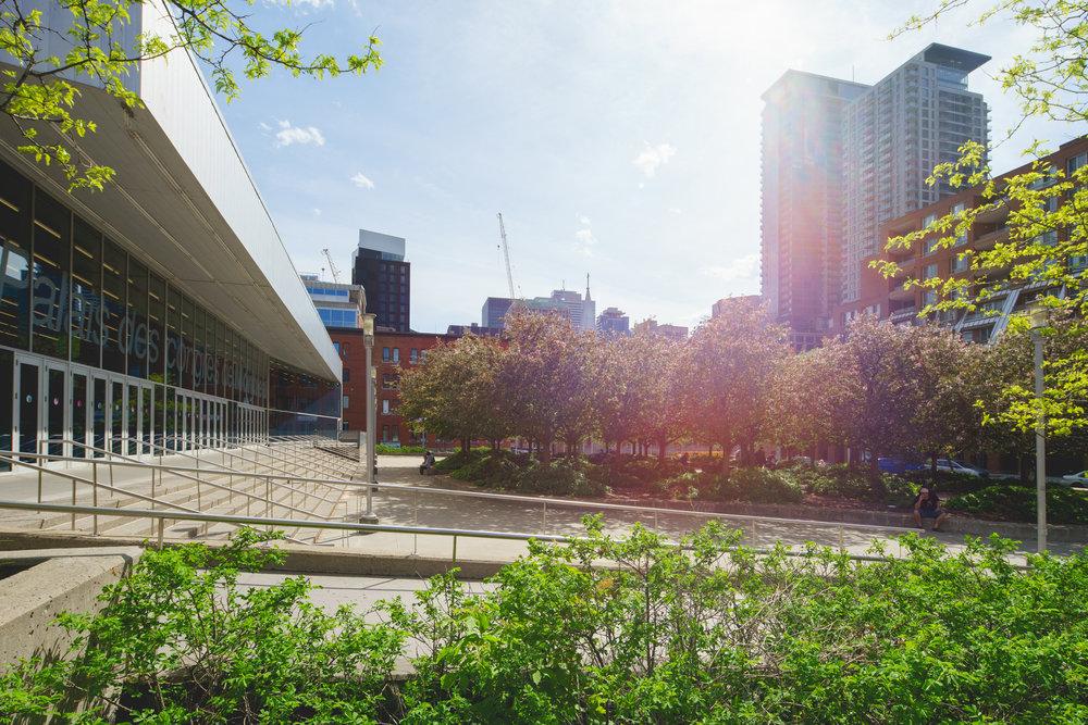 <<<<< BACK  Esplanade du Palais des congrès -  Claude Cormier + Associés  © Raphaël Thibodeau