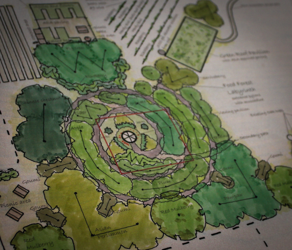 A permaculture design by Sumayya Allen.