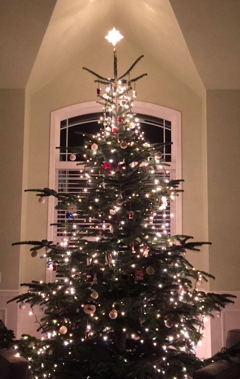 Christmas tree 787.jpg