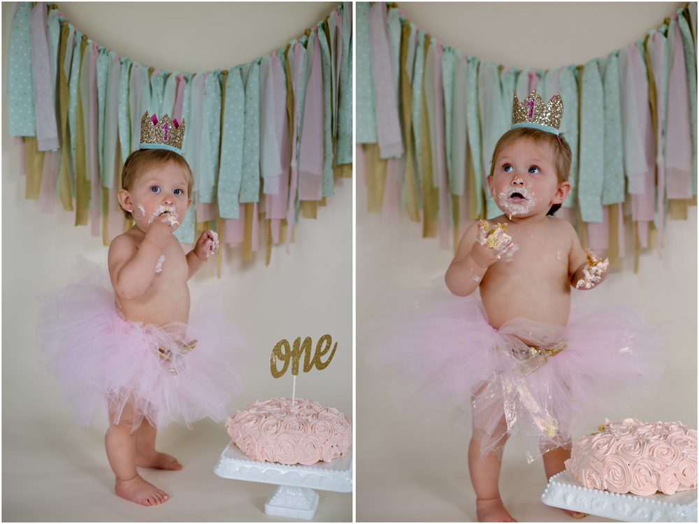Lehigh County Cake Smash Photography