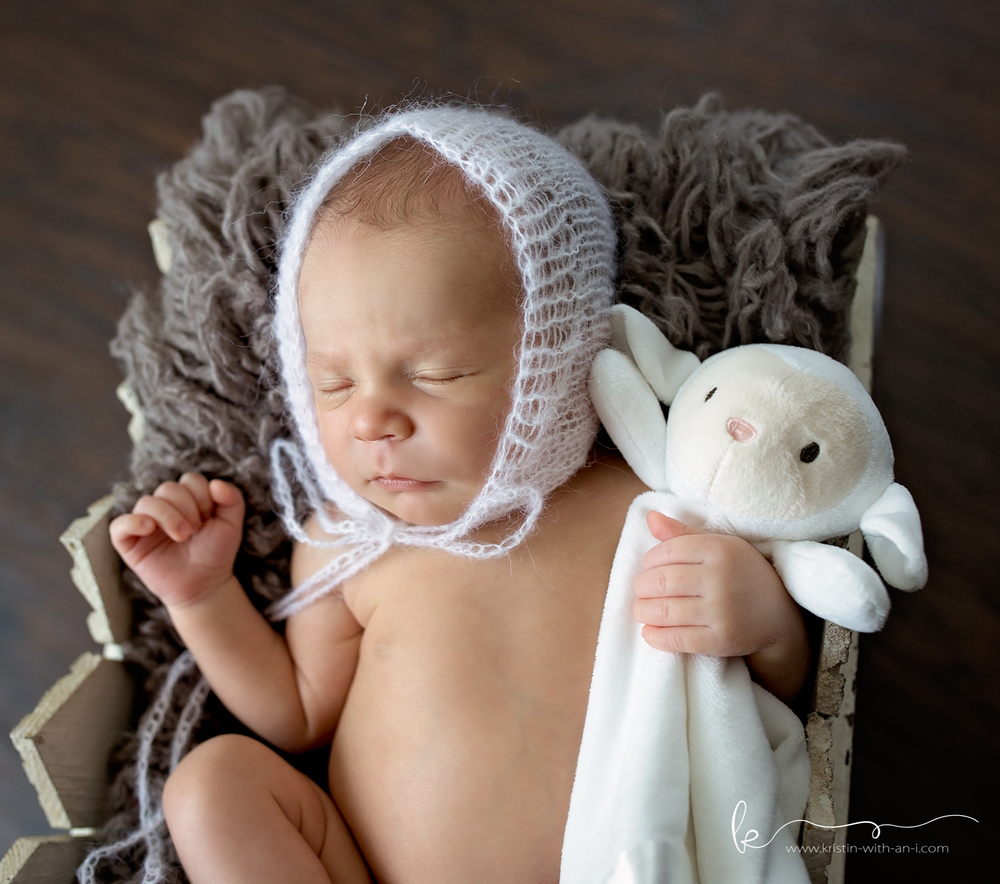 Lehigh Valley Newborn Photographer