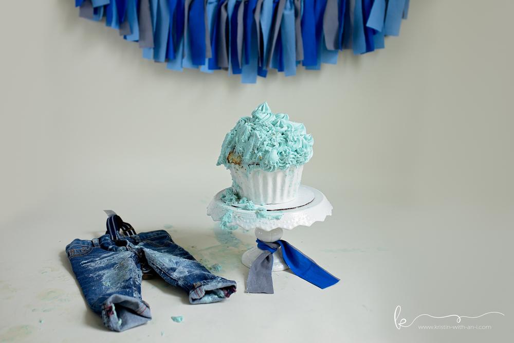 Lehigh Valley Cake Smash