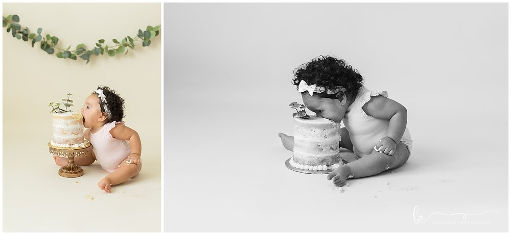 Lehigh Valley Cake Smash Photographer
