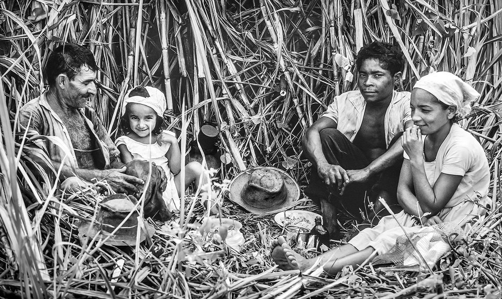 Sugarcane workers near Recife,, Brazil