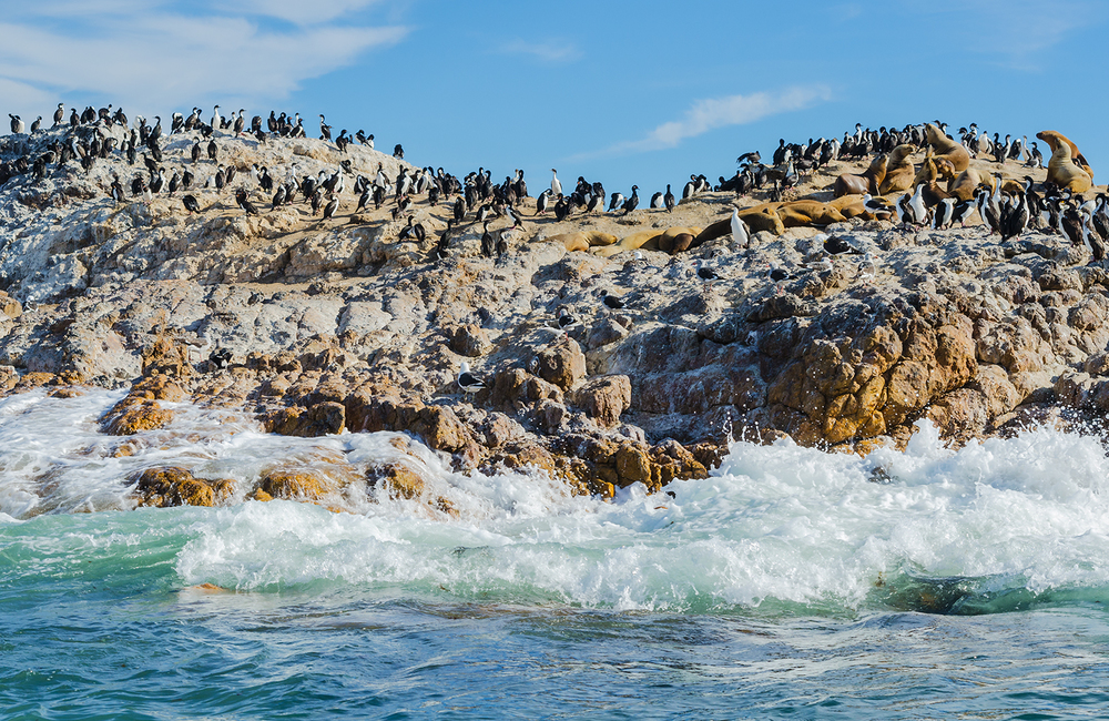Rock island, Bahia Bustamante, Patagonia, Argentina