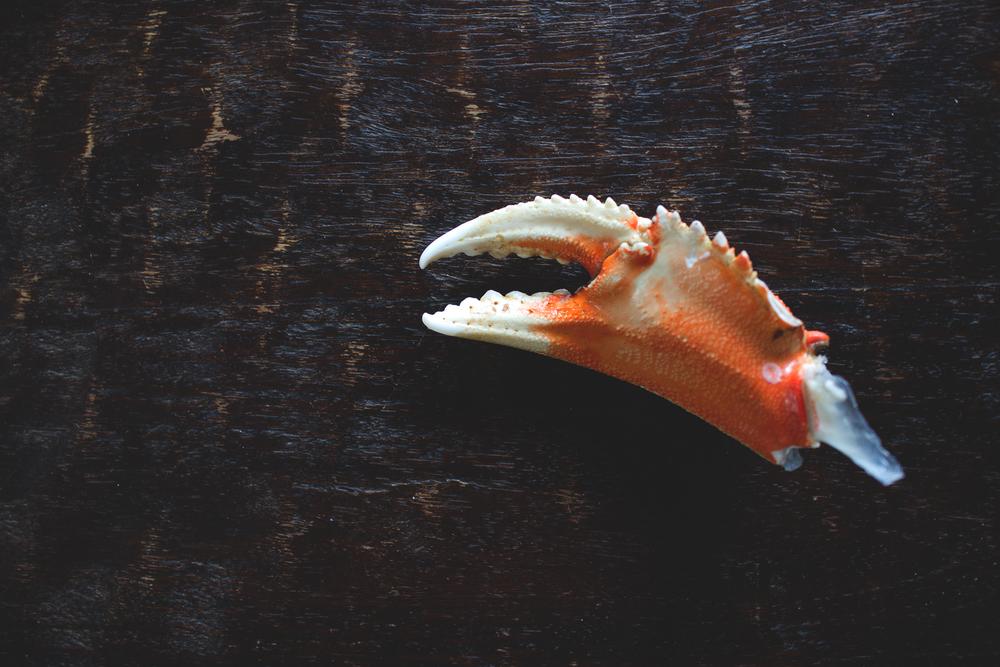 Crab Pincher