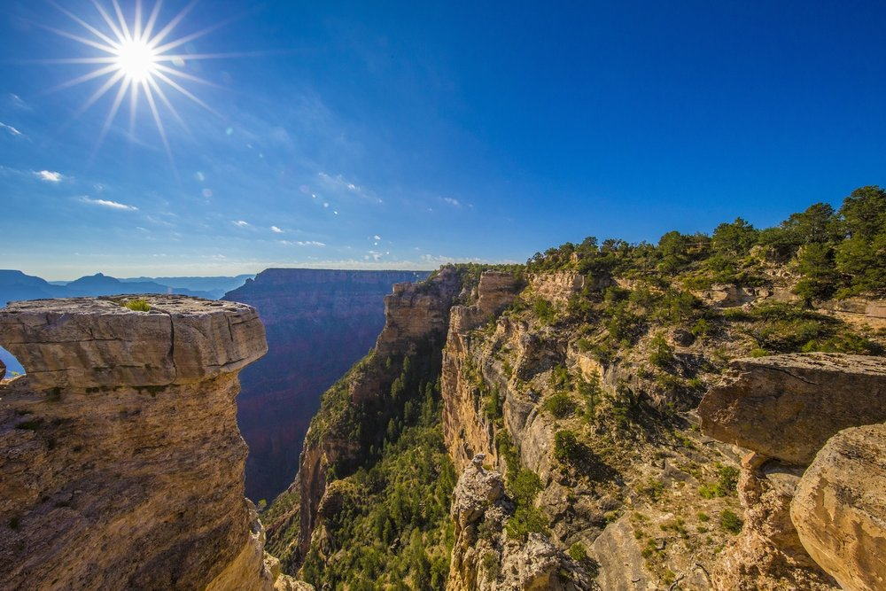 Canyon Paradise