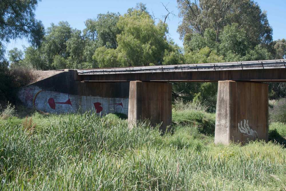 Bendigo-Creek-Bridge-Graffiti.jpg