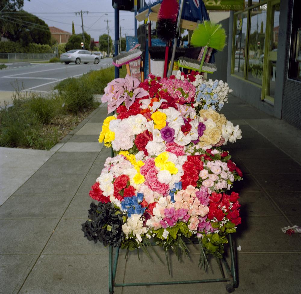 Plastic Flowers (2011)