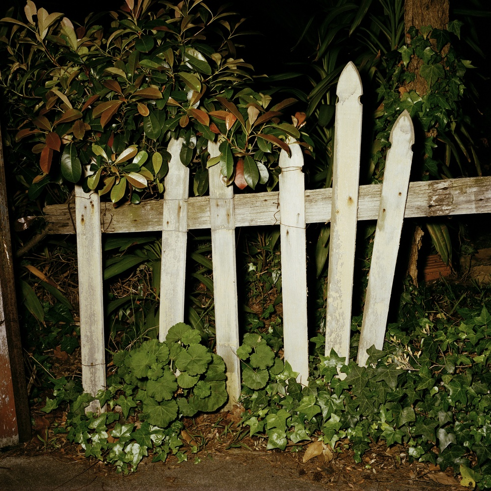 Picket Fence (2003)