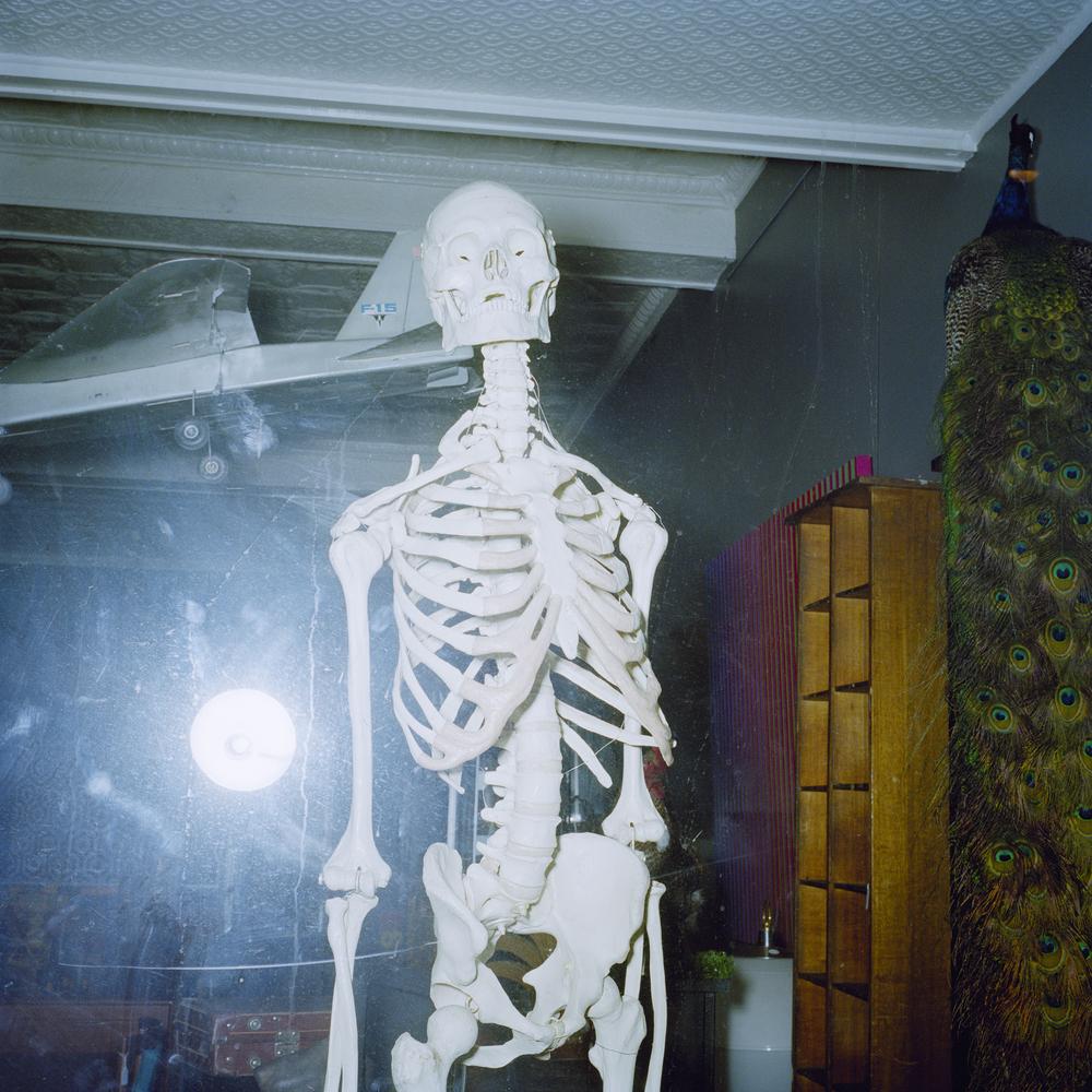 Skeleton (2010)