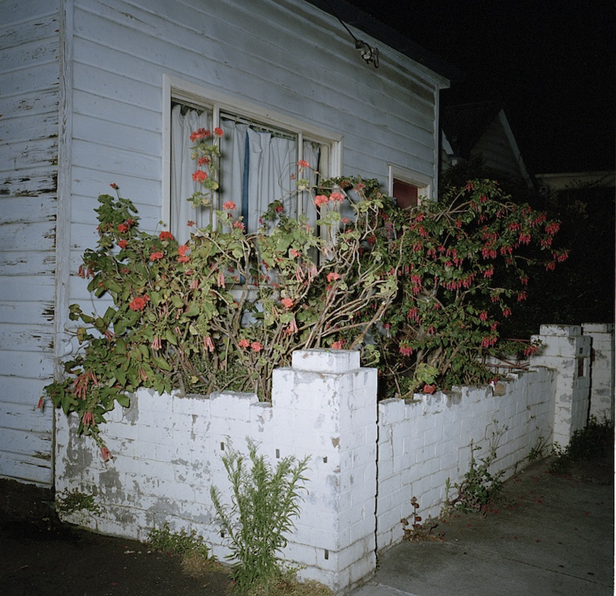 House with Red Flowers.jpeg