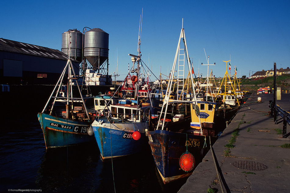 Boats in Wicklow Harbour, 1998