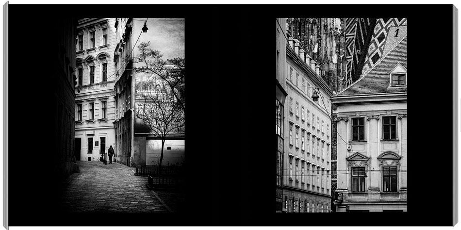 Black and White Vienna