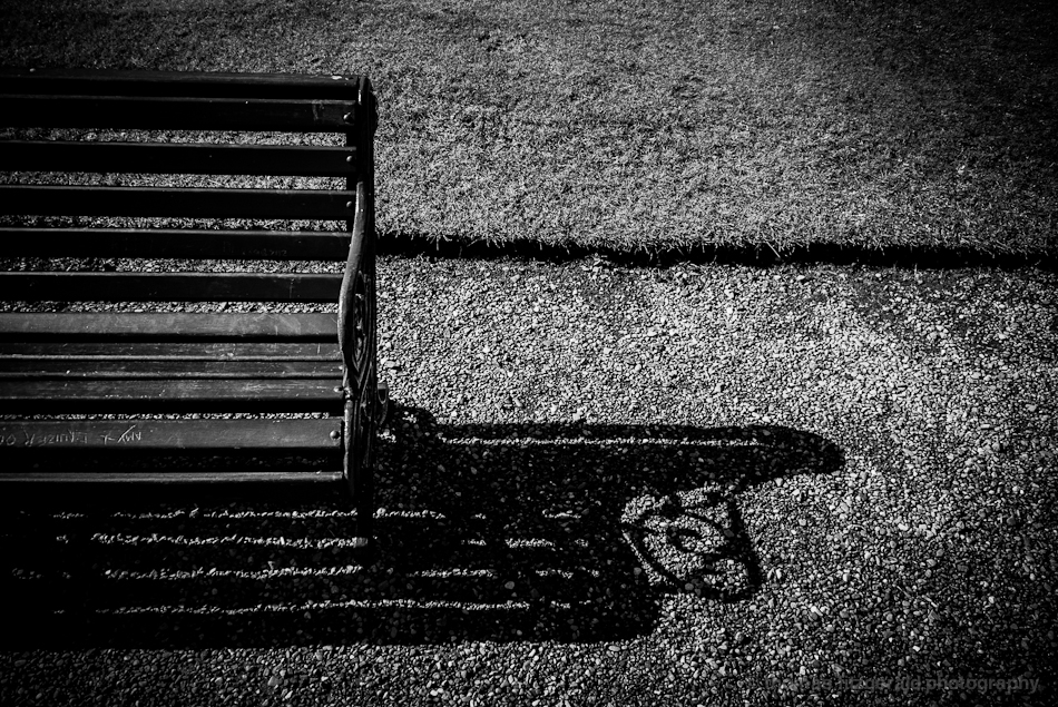 Shadow of a bench