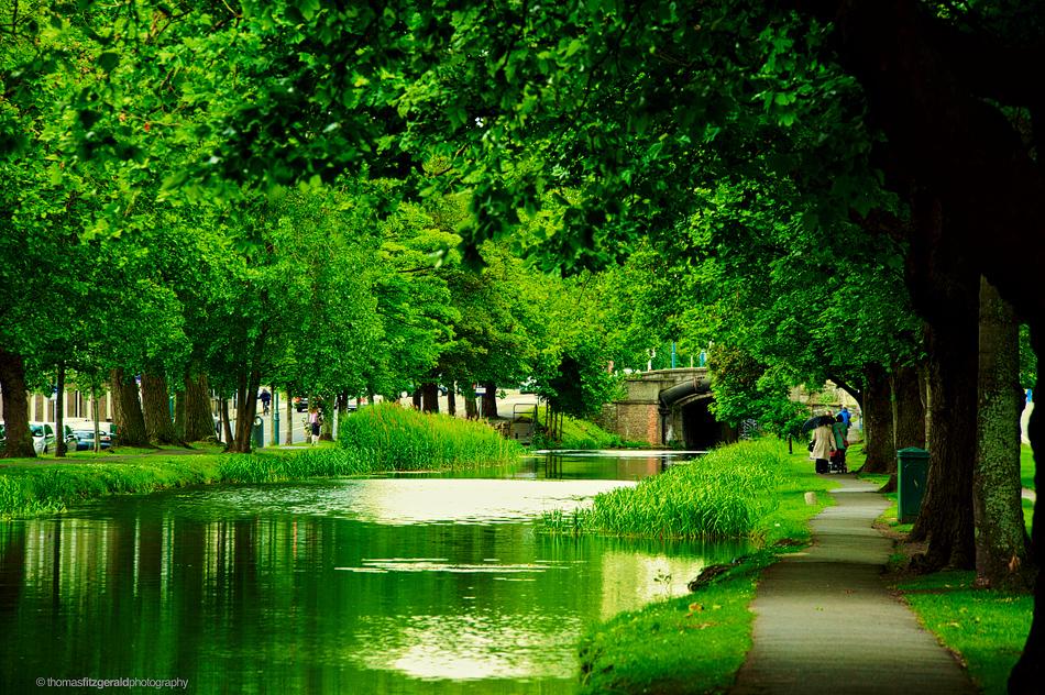 canal vividised