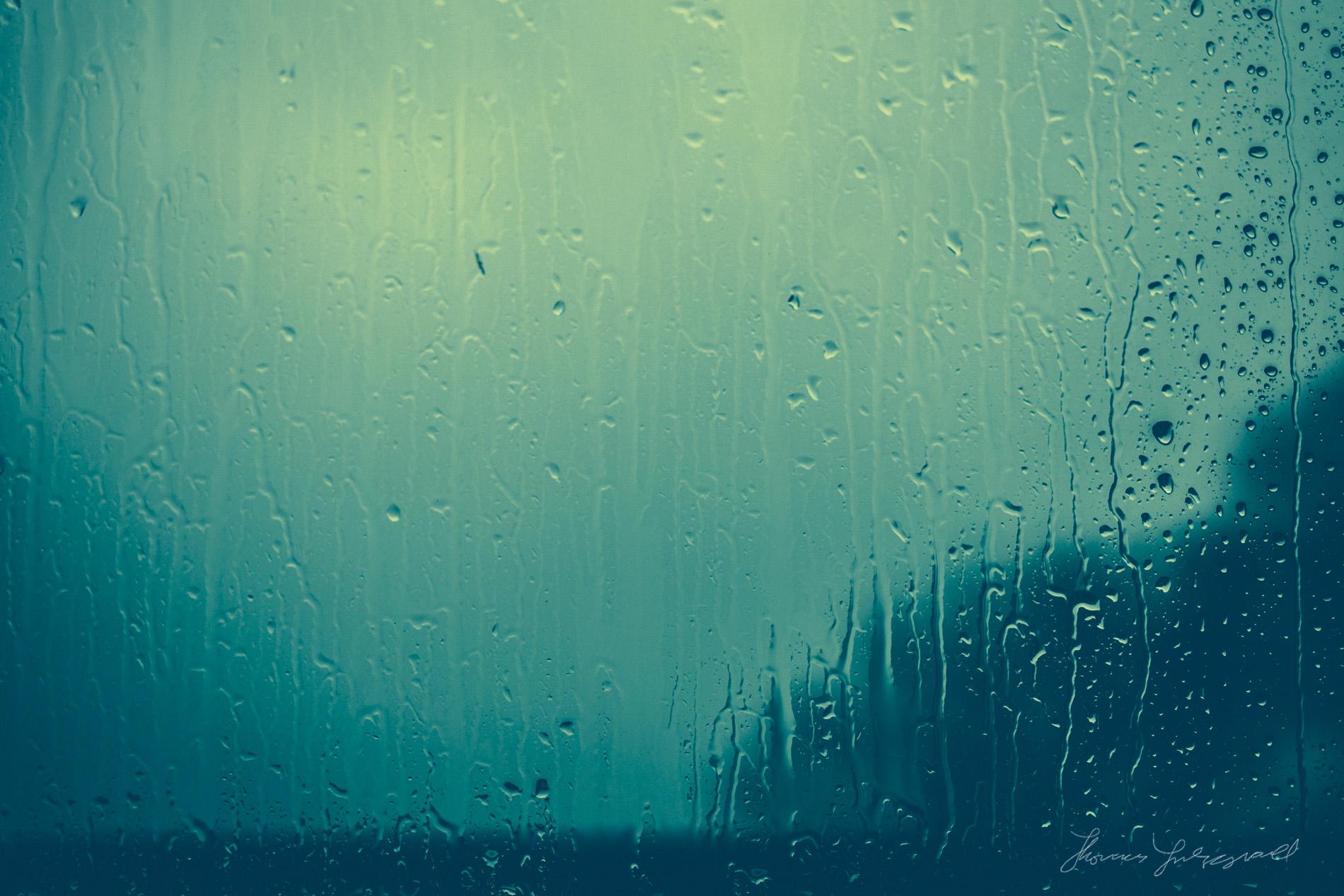 Polaroid Rain