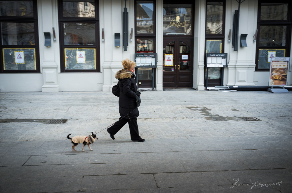 Woman Walking Her Dog, Vienna, Fujifilm X100