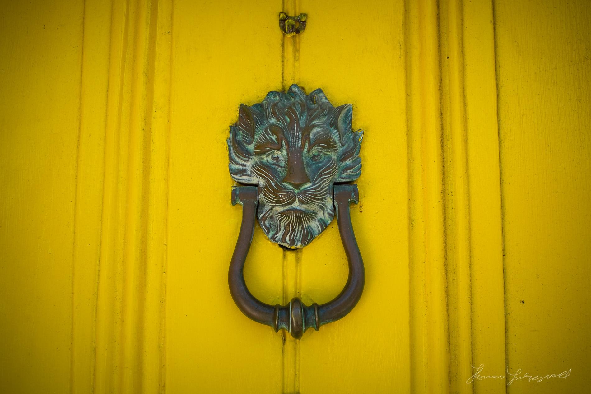 Lion Door Knocker on Yellow Door
