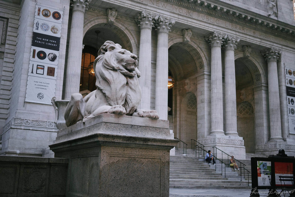 One of the famous Lions outside the NYC Public Library (as seen in Ghostbusters!)