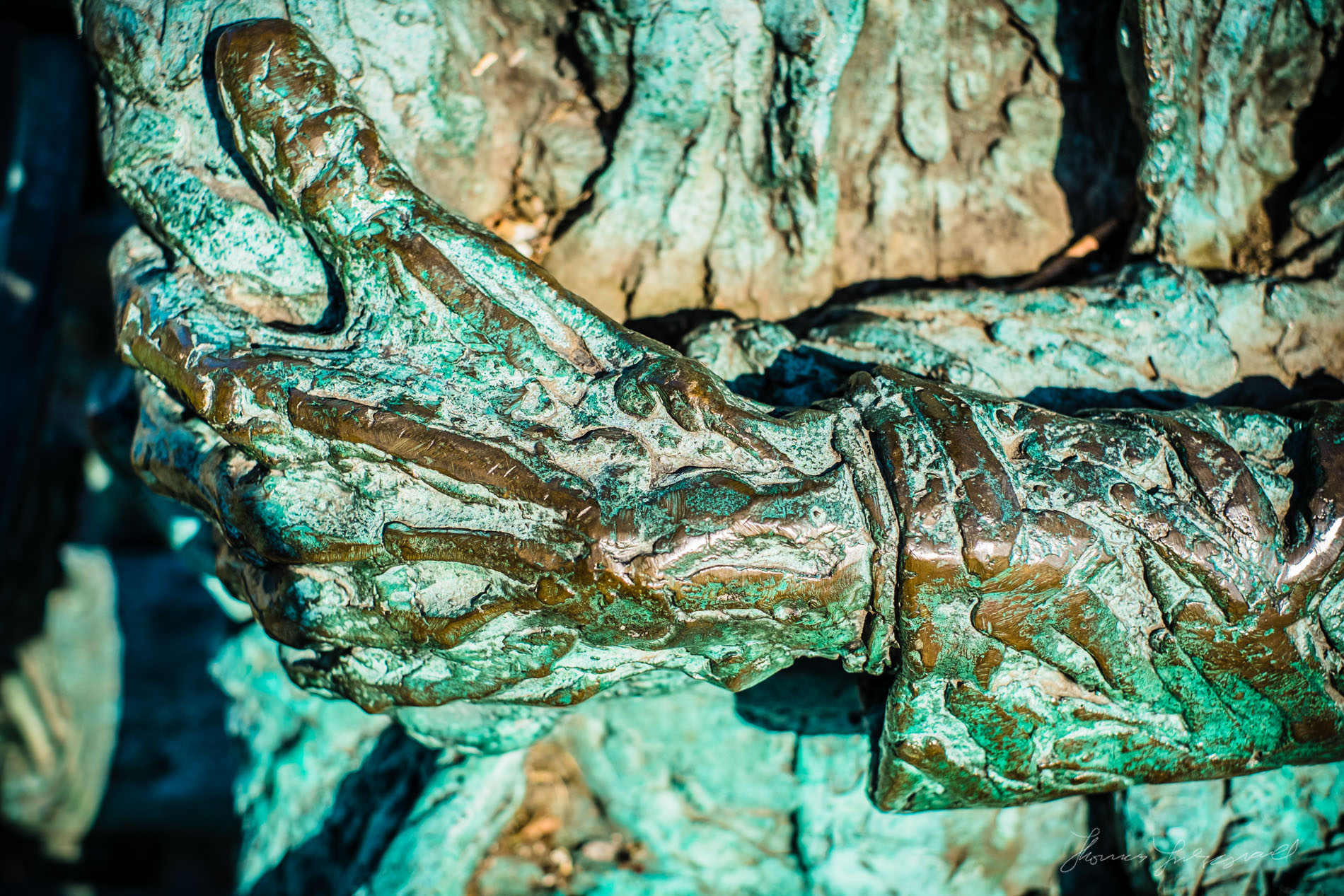 The hands of Patrick Kavanagh