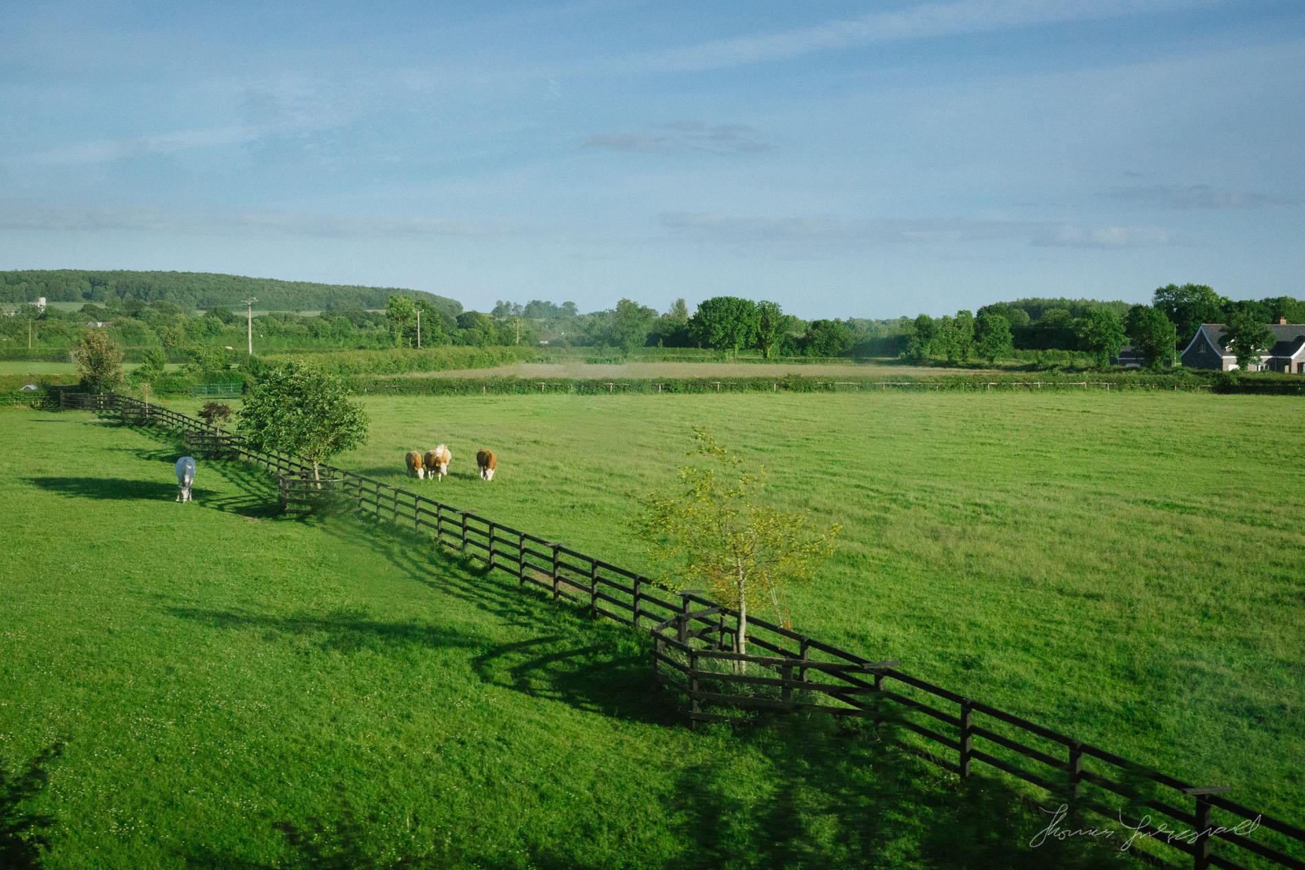 A Farm as Seen from the Train