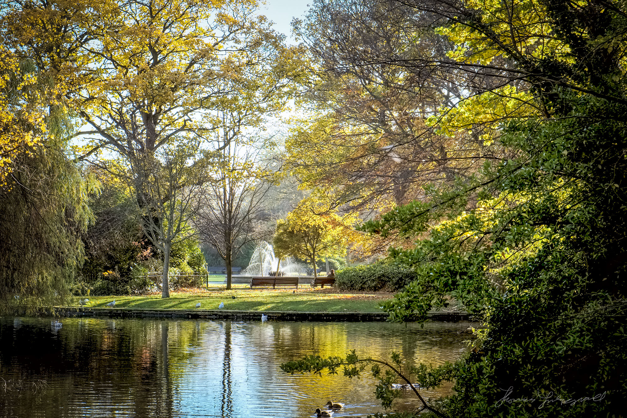 Fall Colour over the Lake in Stephen's Green, Dublin - Fuji XE1