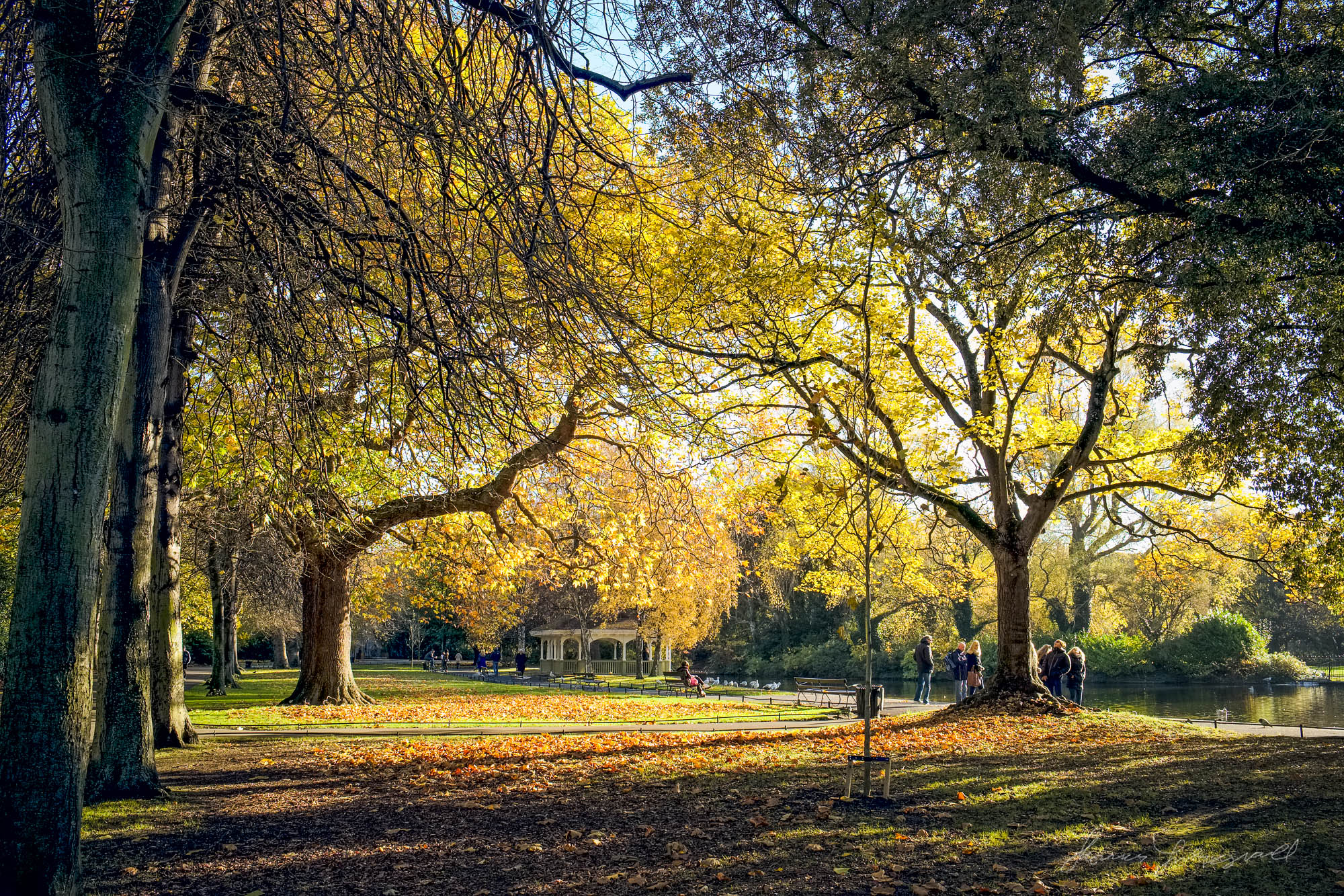 Golden Colours in Stephen's Green - Fujifilm XE1