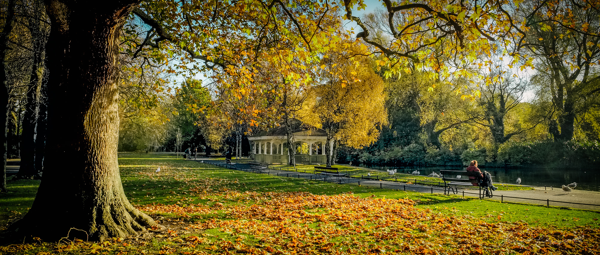 A panorama of the Autumn colours in St. Stephen's Green in Dublin