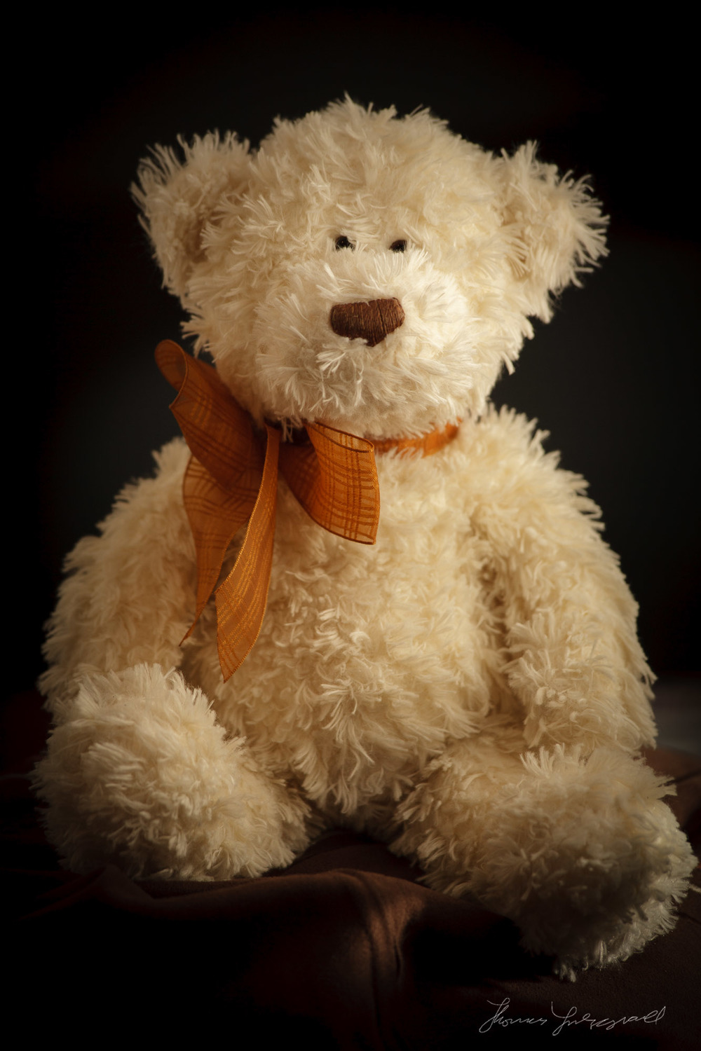 White Bear Teddy Bear Portrait