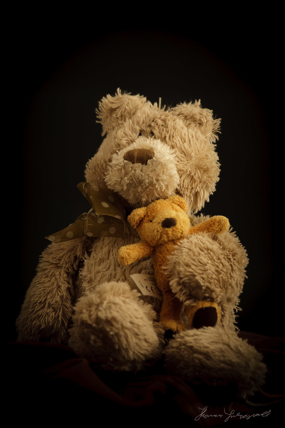 Little Beige Bear with Tiny friend Teddy Bear Portrait