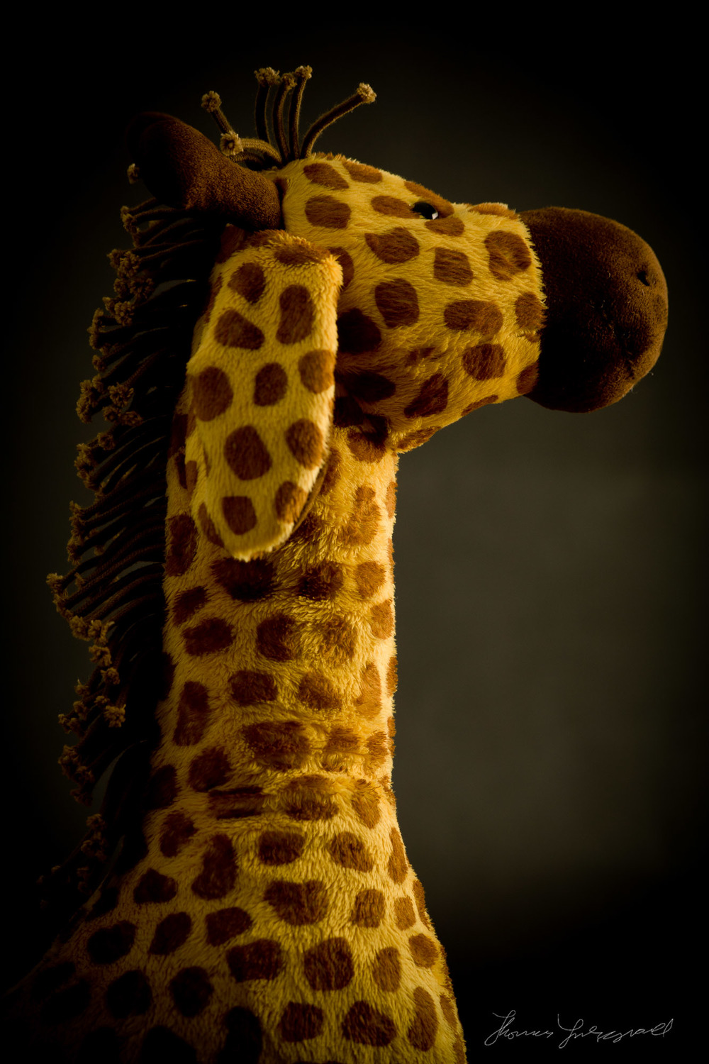 Stuffed Giraffe Teddy Bear Portrait
