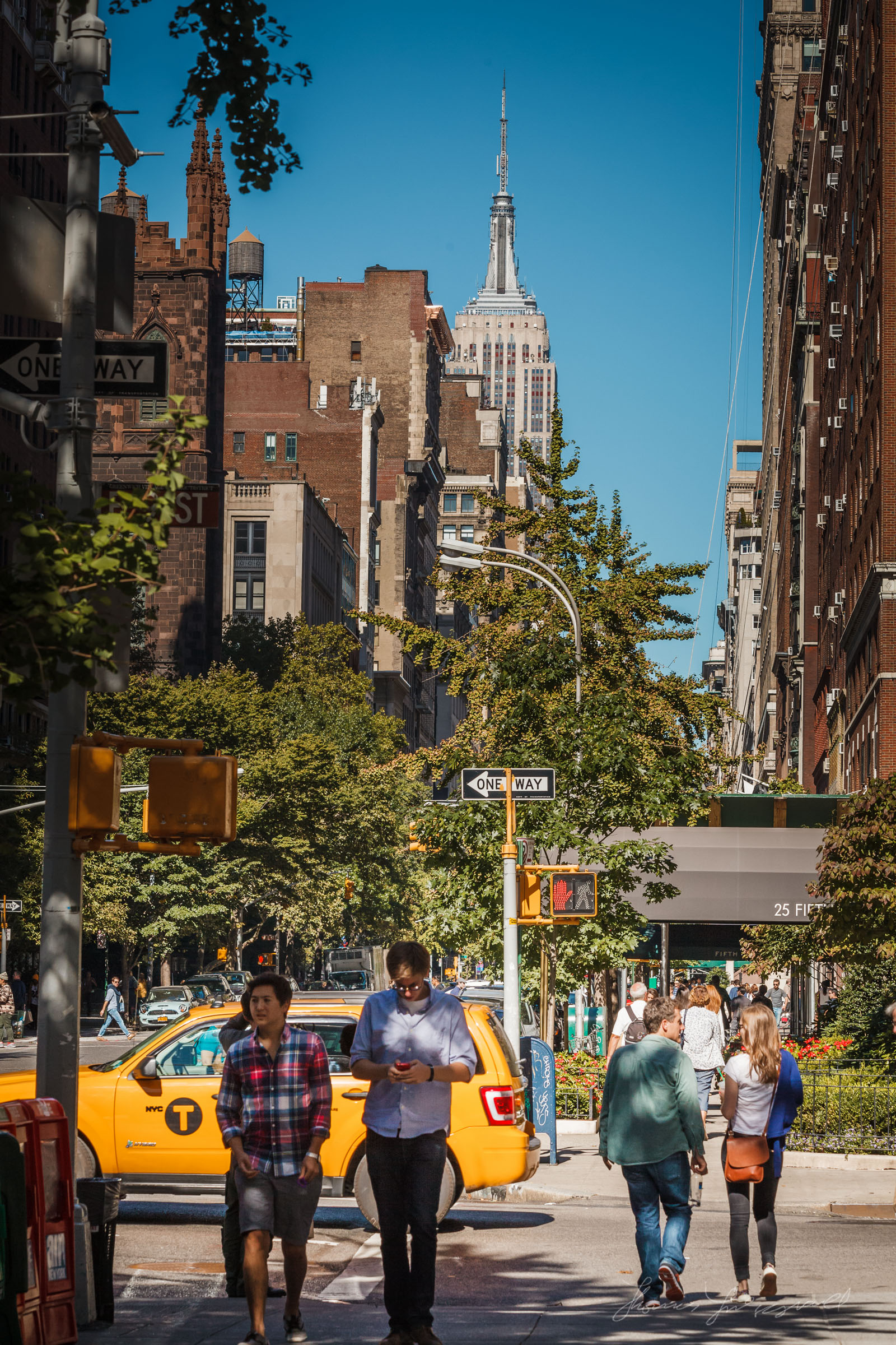 A Sunny day on 5th Avenue, New York City