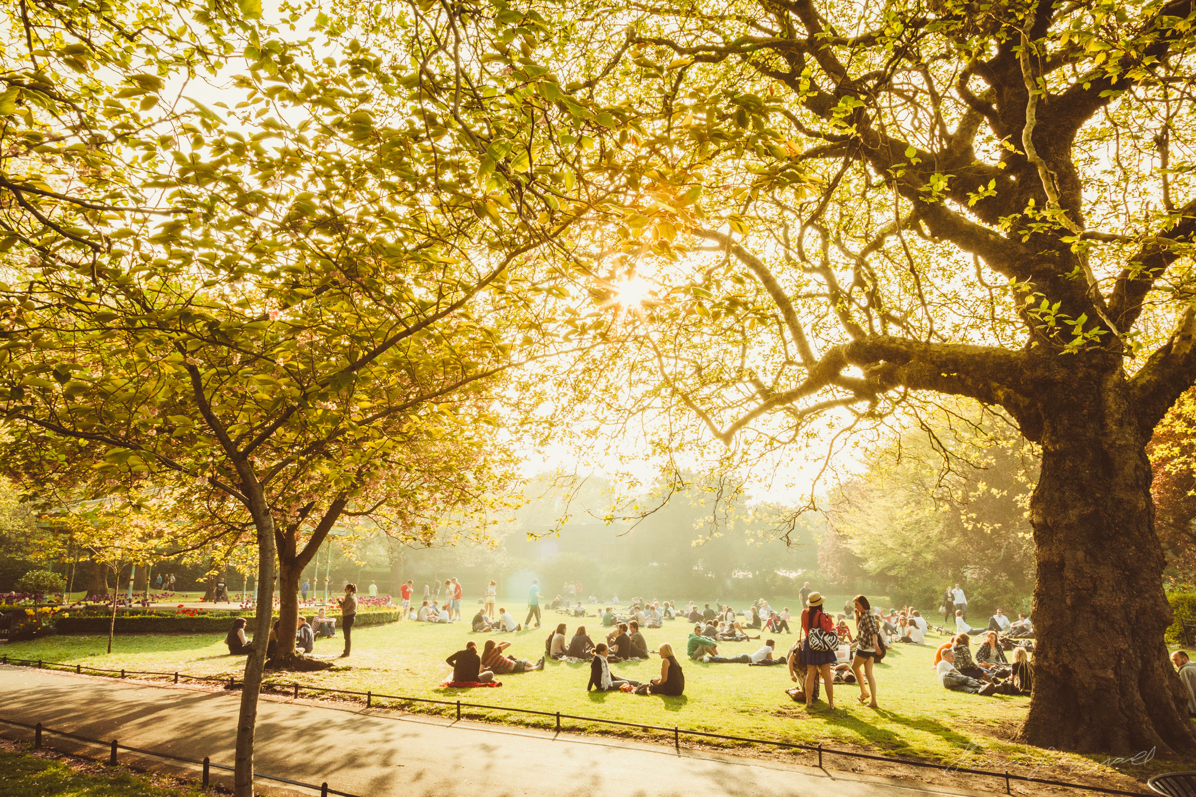People enjoying the summer sunshine in St. Stephen's Green.