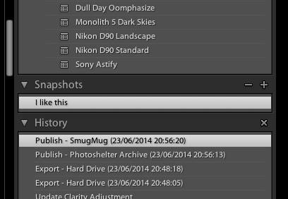 Snapshots-Panel