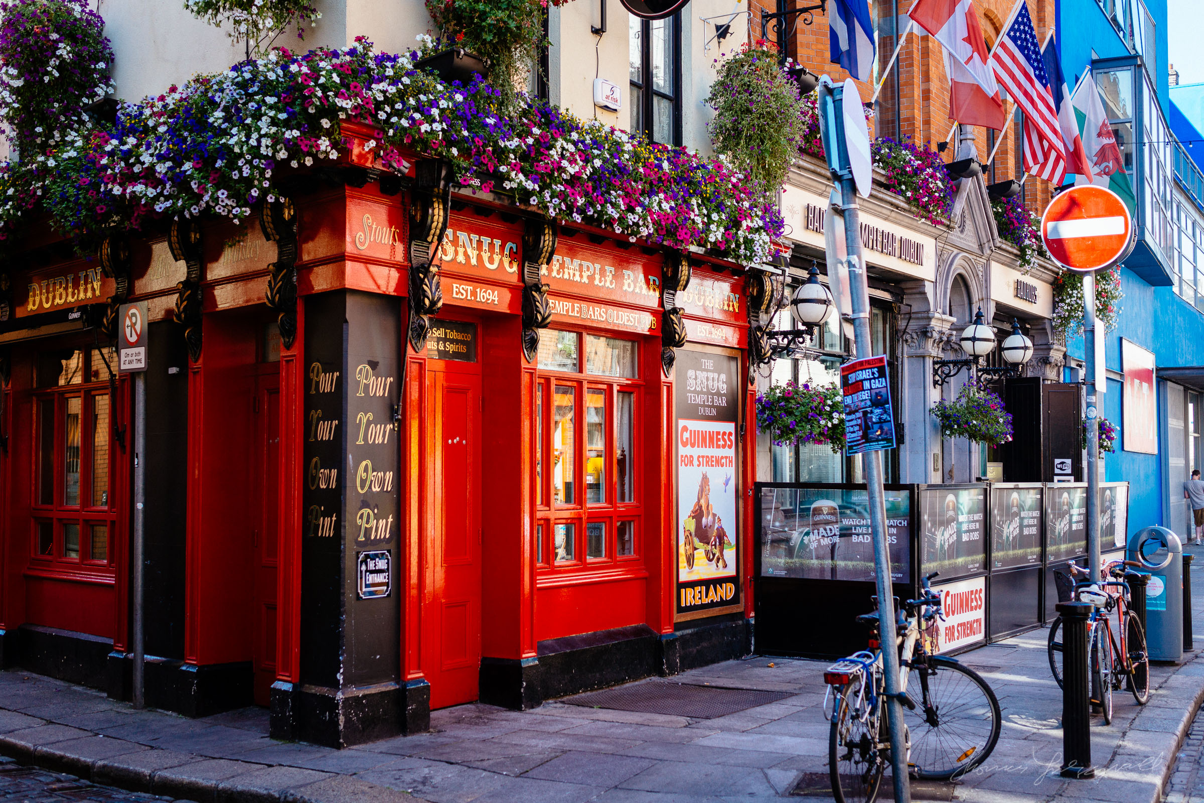 Flowers outside a Dublin Pub