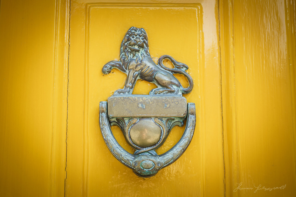 Lion on Yellow Door