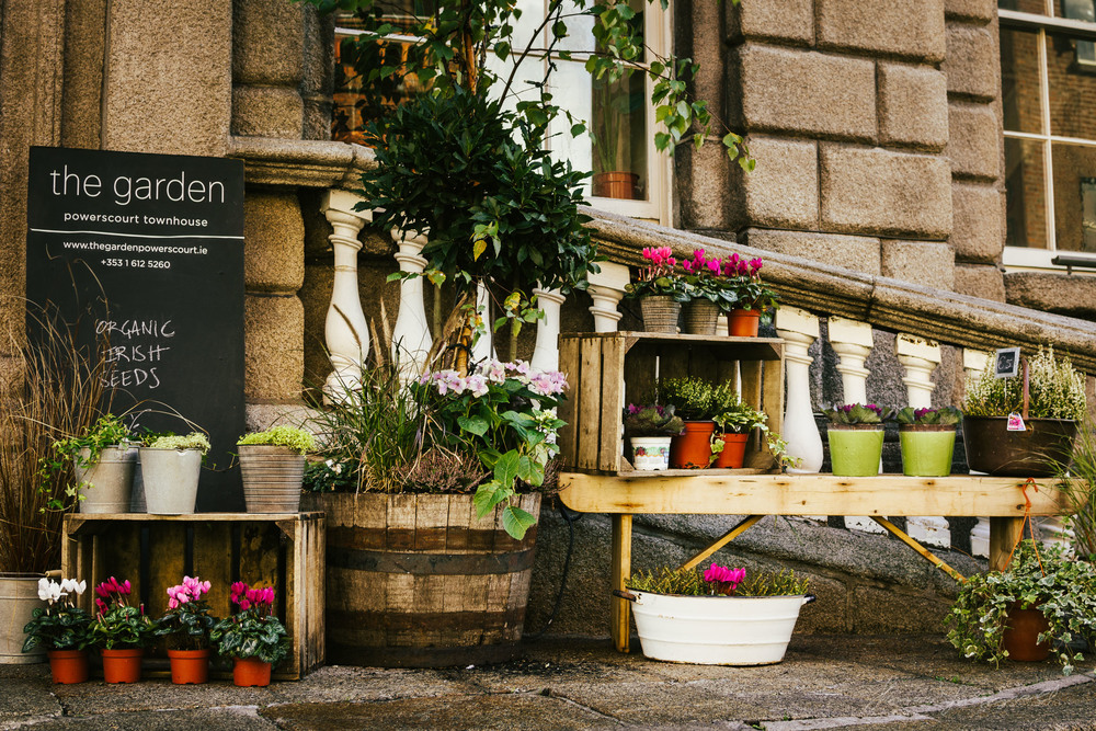 Flowers outside a shop - With Landscape Gold Lightroom Presets Applied