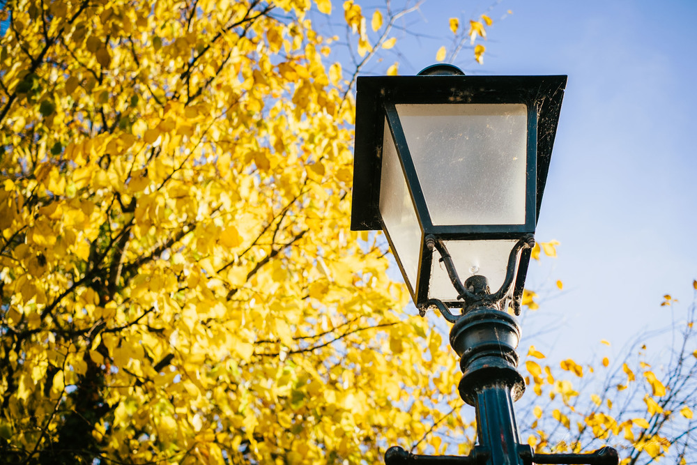 Lamp Post - With Landscape Gold Lightroom Presets Applied